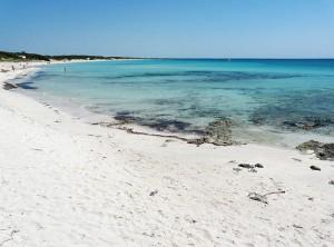 800px-Spiaggia_di_Punta_Prosciutto